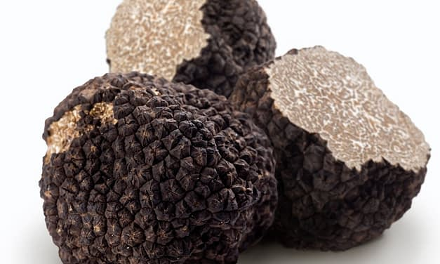 Truffle Oil vs Real Truffles
